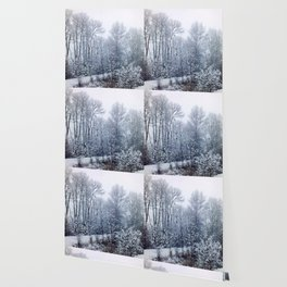 snow trees III Wallpaper