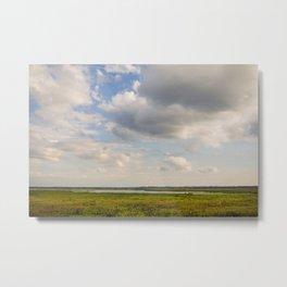 floridian prairie Metal Print