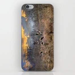 Sunset Geese Landscape iPhone Skin