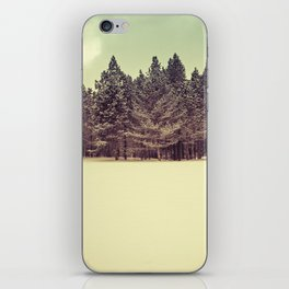 winter in the park iPhone Skin