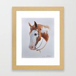 Western Horse Framed Art Print