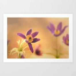 Fine Flower in Detail  Art Print
