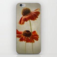 Helenium iPhone & iPod Skin