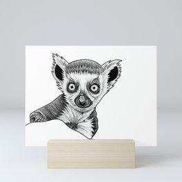 Baby ring-tailed lemur Mini Art Print