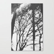 Tree Shadows - Solarized Canvas Print