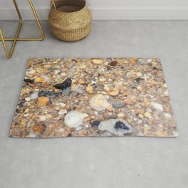 Virginia - Find the Fossil Shark Tooth Rug