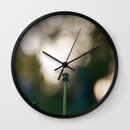 Dandelion blossom defocused Wall Clock