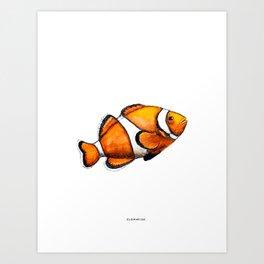 Animal Illustration - Clownfish - Watercolor poster Art Print