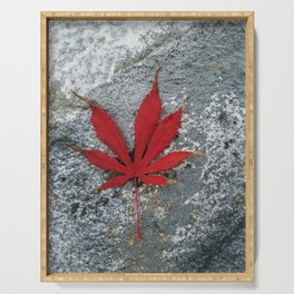 Japanese maple leaf on Rock Serving Tray