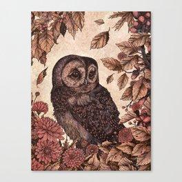 Tawny Owl Pink Canvas Print