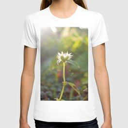 Nature Loves You T-shirt