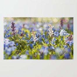 Spring flower meadow - Colorful flowers -floral Rug