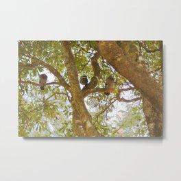 Incense tree with pigeons Metal Print
