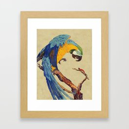 Macaw and Caterpillar Framed Art Print