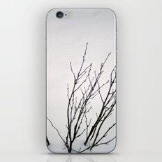 Dead Snow iPhone & iPod Skin