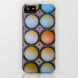 colorful eggs from southern Chile iPhone Case