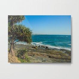Pandanus Palms- Moffat Beach, Australia Metal Print