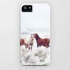 Winter Horseland iPhone (5, 5s) Slim Case