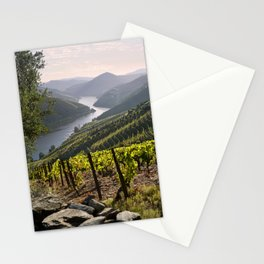 Vineyards along the Douro Valley, Portugal Stationery Cards