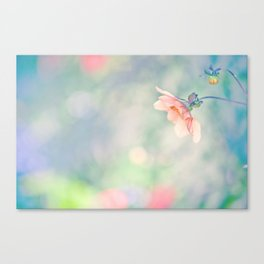 Daylight Daydreaming Canvas Print