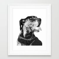 great dane Framed Art Prints featuring Great Dane by onlypencil