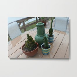 Catus Feel Metal Print
