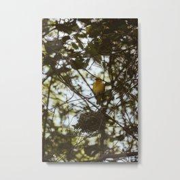 Tropical Birdie Metal Print