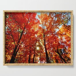 Sun in the Trees Serving Tray
