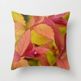 Orange Flame Spirea Throw Pillow