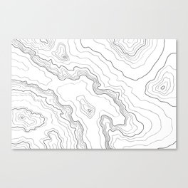 Topography map Canvas Print