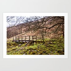Falloch Footbridge Art Print