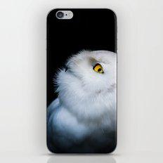 Winter White Snowy Owl iPhone & iPod Skin