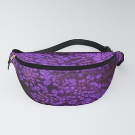 Purple Queen Anne's Lace Landscape Fanny Pack