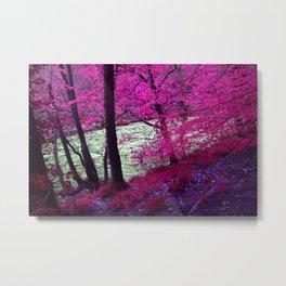 Fairy Woods Metal Print