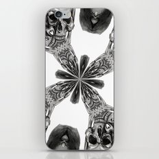 Divide and Conquer iPhone & iPod Skin
