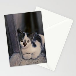 fugue III Stationery Cards