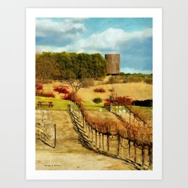 Temecula Wine Country Art Print