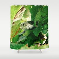 snake Shower Curtains featuring Snake by Stecker Photographie