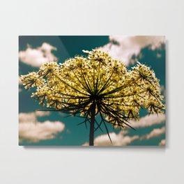 Under a Flower Sky Metal Print
