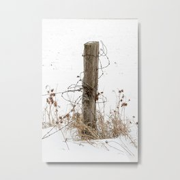 Alone in the Cold Metal Print