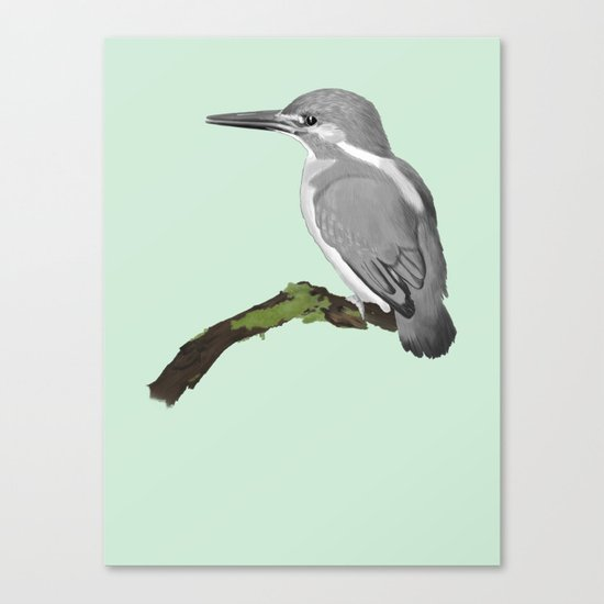 Kingfisher in gray Canvas Print