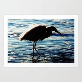 Shore Bird Art Print