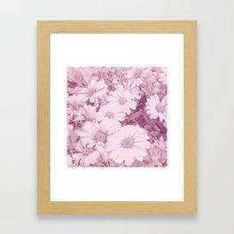 Elegant blush pink white daises botanical floral Framed Art Print