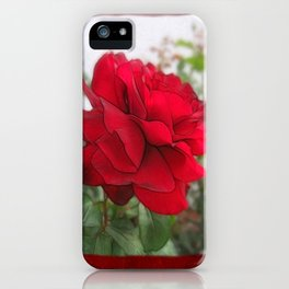 Red Rose Edges Blank P5F0 iPhone Case