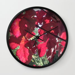Vivid Red Leaves in Autumn Wall Clock