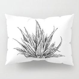 Aloe Vera Botanical Sketch Pillow Sham