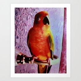 Bobo The Bird Art Print