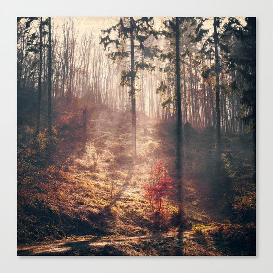 Little Red Tree Canvas Print