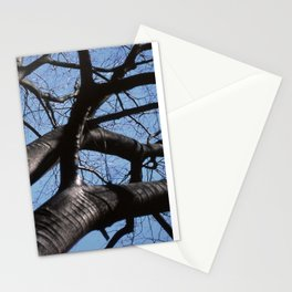 maple tree in winter Stationery Cards