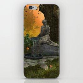 The source  iPhone Skin